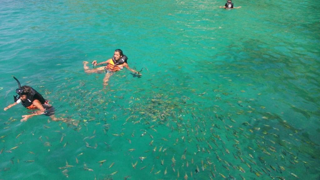 Krabi snorkeling at Chicken Island