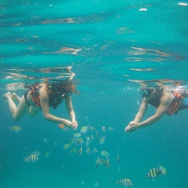 Racha Yai snorkel