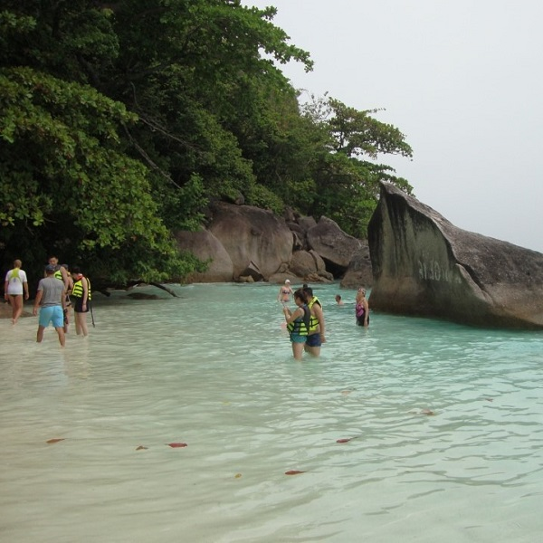 Cheap Similan Island Tour Snorkeling Thailand
