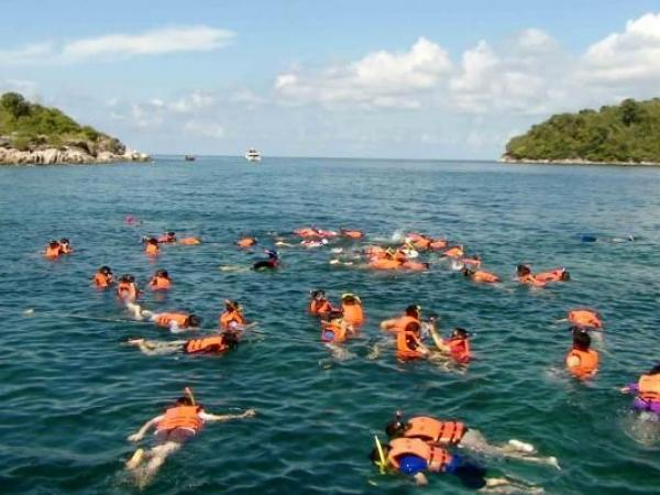 coral island snorkelers