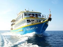 Oktavia snorkeling liveaboard