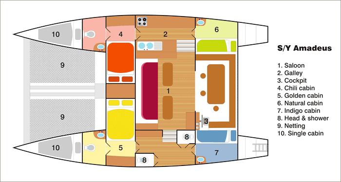 Amadeus layout