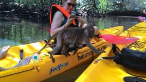 Krabi kayaking Ao Thalane