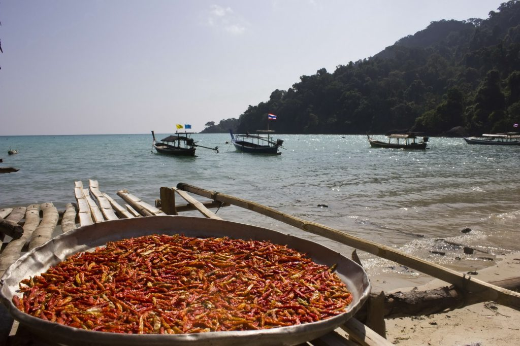 Surin Islands chillis drying