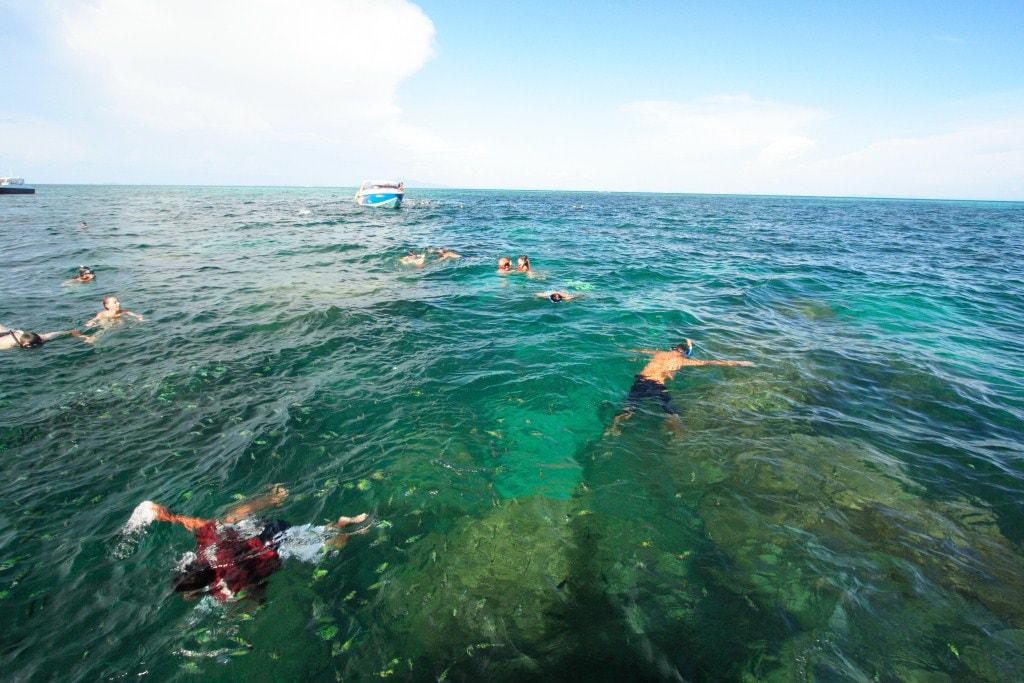 Phi Phi snorkeling tour