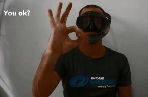 OK hand signal