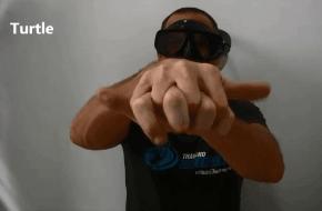 Turtle hand signal