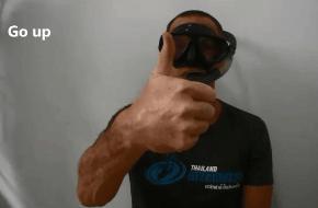 Up hand signal