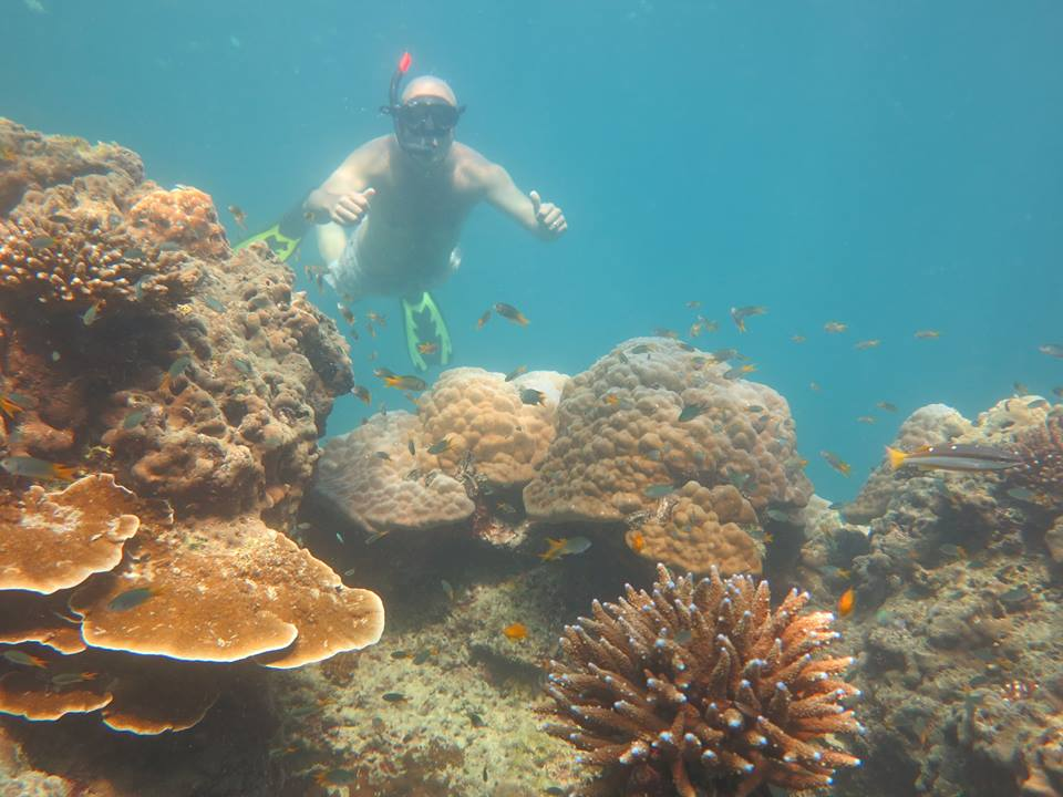 Phi Phi private tour