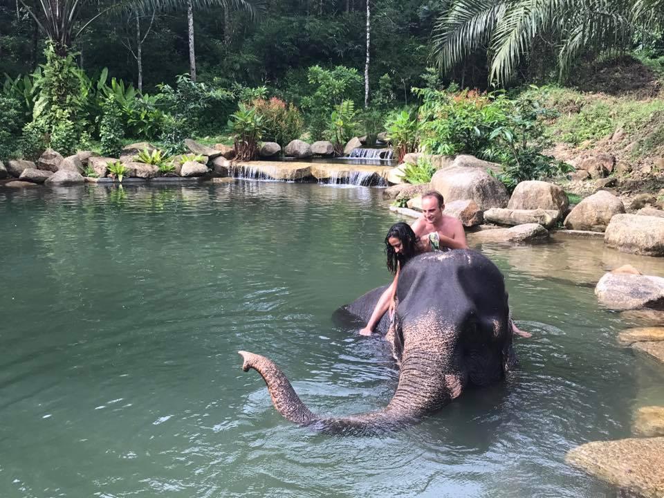 Private Phang Nga add on elephant bathing